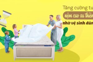 Hướng dẫn cách vệ sinh nệm cao su thiên nhiên đúng cách